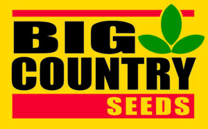 Big Country Seeds